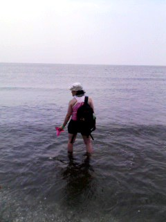 SUMMER SONIC08一日目写真集