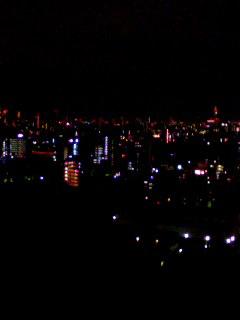 歌舞伎町爆裂純情