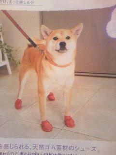靴は履いてないけどね、