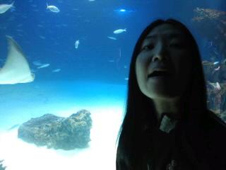 サンシャイン水族館に行きました。
