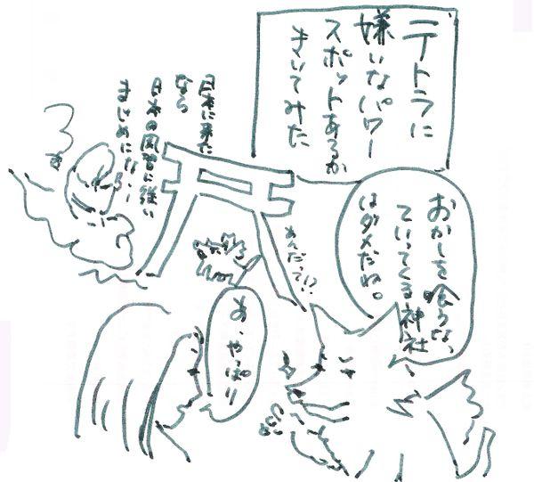 Blogokashi