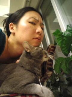 部屋と外道猫とアタシ。