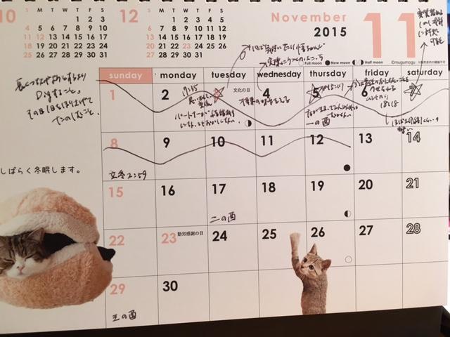 10/28から11/8<br />  までの土用予報2015